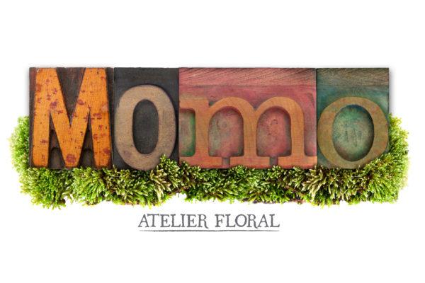 Logo Momo Alta
